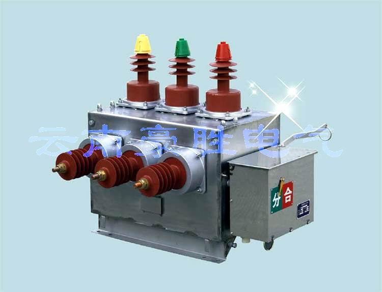 ZW10系列户外高压真空断路器高压断路器